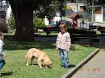 PUERTO VARAS - CHILE